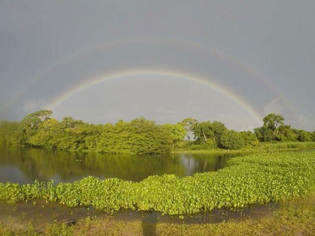 pousada piuval pantanal mato grosso 5