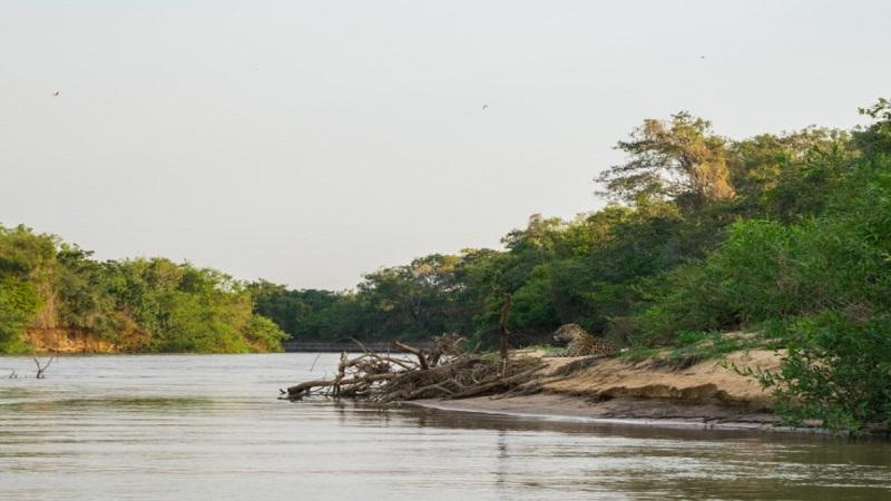 Parque Estadual Encontro das Aguas no Pantanal